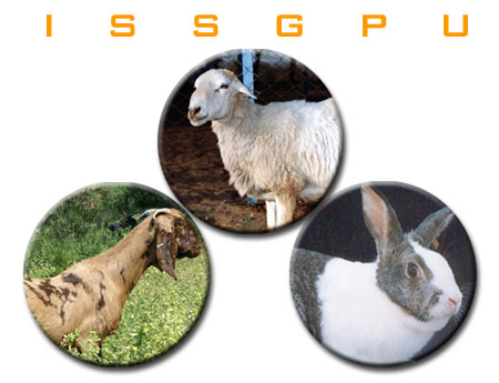 INDIAN SOCIETY FOR SHEEP AND GOAT PRODUCTION AND UTILIZATION (ISSGPU)